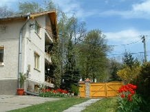 Casa Szakacs - accommodation in  Harghita Covasna (15)