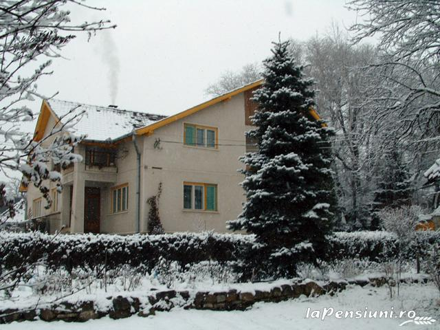 Casa Szakacs - accommodation in  Harghita Covasna (16)