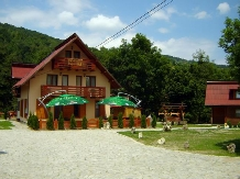 Rural accommodation at  Pensiunea Andreea