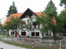 Casa din Parc - accommodation in  Harghita Covasna (04)