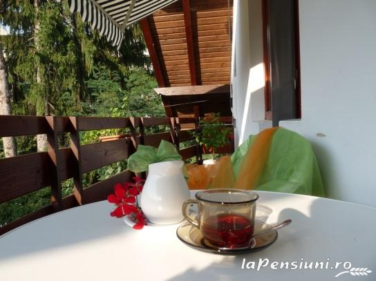 Casa din Parc - accommodation in  Harghita Covasna (05)