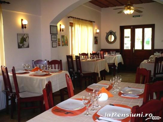 Casa din Parc - accommodation in  Harghita Covasna (12)