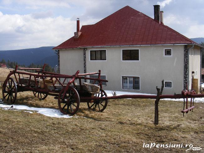 Pensiunea Rom Concord - accommodation in  Apuseni Mountains, Belis (01)