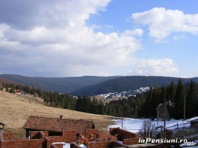 Pensiunea Rom Concord - accommodation in  Apuseni Mountains, Belis (11)