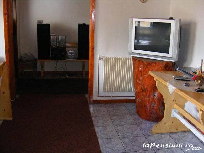 Pensiunea Rom Concord - accommodation in  Apuseni Mountains, Belis (13)