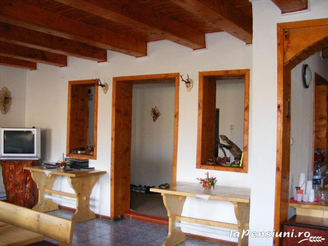 Pensiunea Rom Concord - accommodation in  Apuseni Mountains, Belis (14)