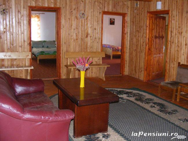Pensiunea Rom Concord - accommodation in  Apuseni Mountains, Belis (15)