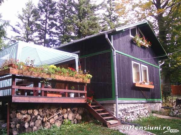 Vila Riciu - accommodation in  Prahova Valley (01)