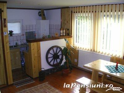 Vila Riciu - accommodation in  Prahova Valley (04)