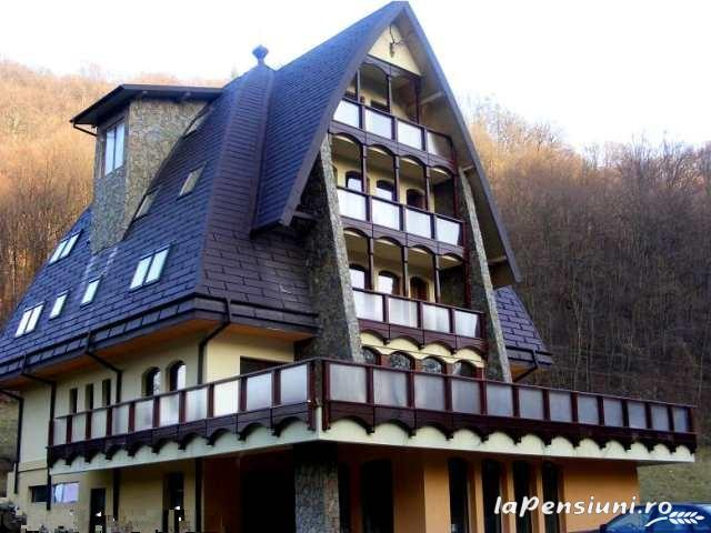 Casa Vanatorilor - accommodation in  Olt Valley (10)