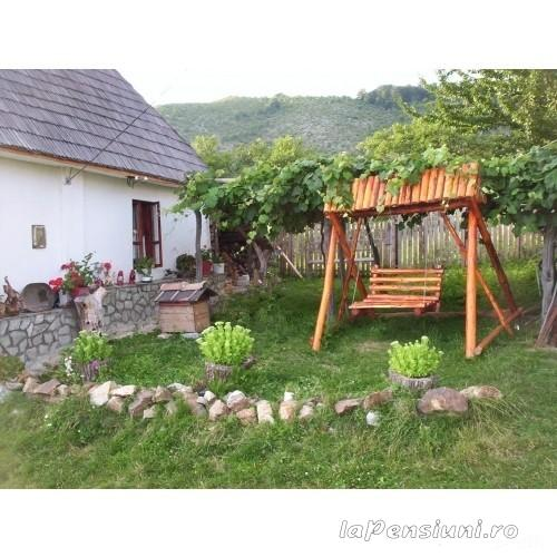 Pensiunea D&D - accommodation in  North Oltenia (05)