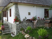 Pensiunea D&D - accommodation in  North Oltenia (06)