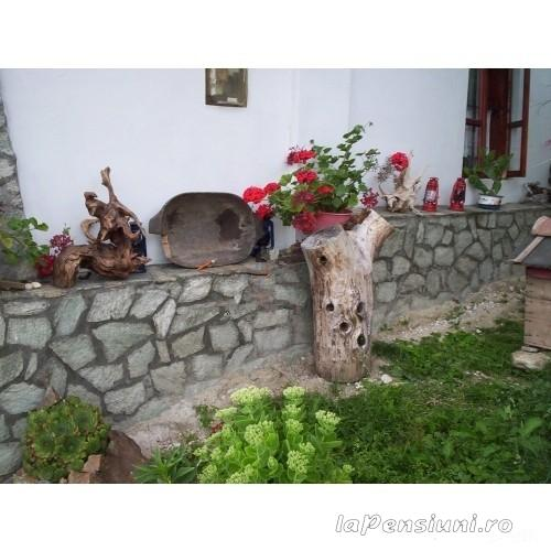 Pensiunea D&D - accommodation in  North Oltenia (08)