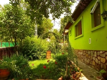 Rural accommodation at  Casuta Rustik Gogon