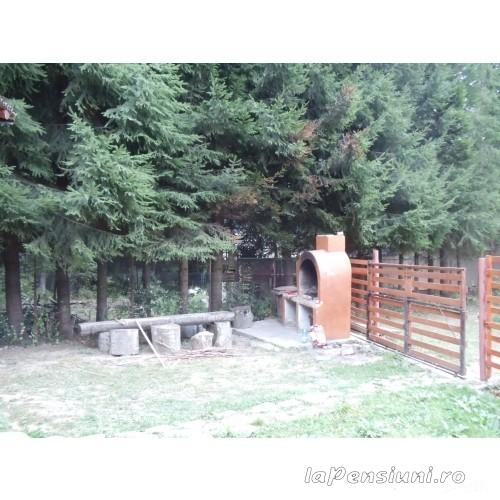 Casuta Paterau - accommodation in  Slanic Prahova (08)