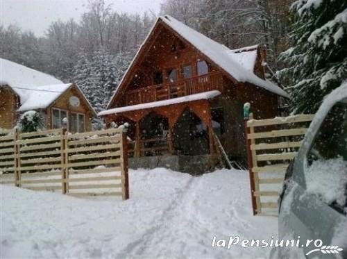 Casuta Paterau - accommodation in  Slanic Prahova (16)