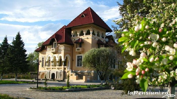 Casa Danielescu - accommodation in  North Oltenia (01)
