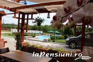Casa Danielescu - accommodation in  North Oltenia (16)