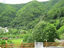 Pensiunea Garvis - accommodation in  Olt Valley, Voineasa (04)