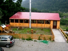 Pensiunea Garvis - accommodation in  Olt Valley, Voineasa (06)