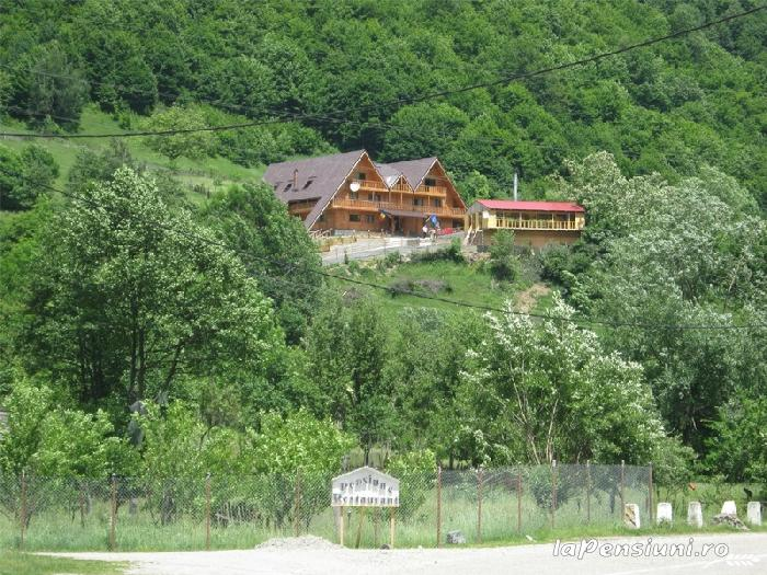 Pensiunea Garvis - accommodation in  Olt Valley, Voineasa (08)