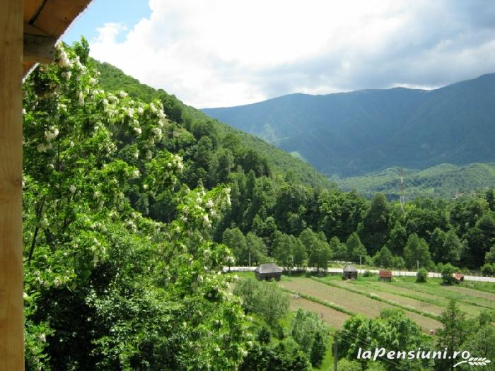 Pensiunea Garvis - accommodation in  Olt Valley, Voineasa (10)