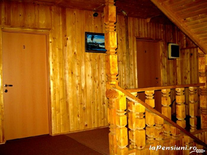 Pensiunea Garvis - accommodation in  Olt Valley, Voineasa (13)