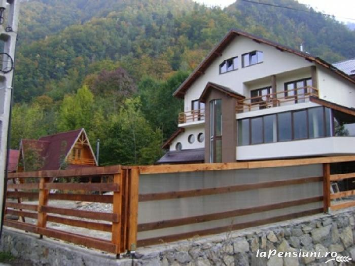 Pensiunea Domnitei Sophie - accommodation in  Olt Valley (01)