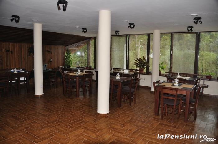 Pensiunea Domnitei Sophie - accommodation in  Olt Valley (10)