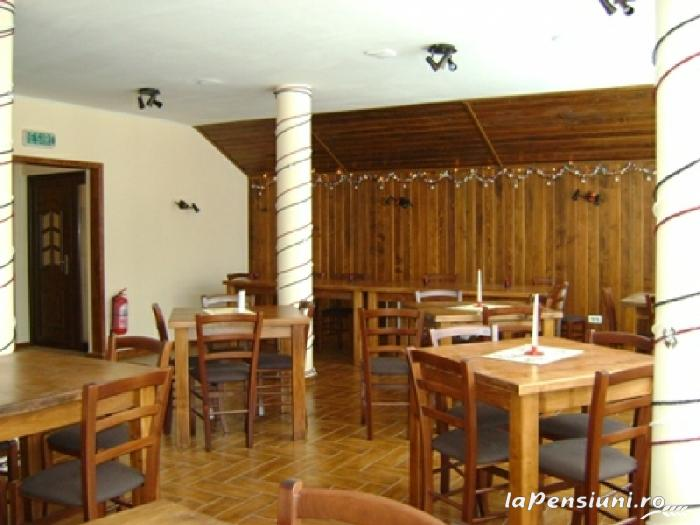 Pensiunea Domnitei Sophie - accommodation in  Olt Valley (11)