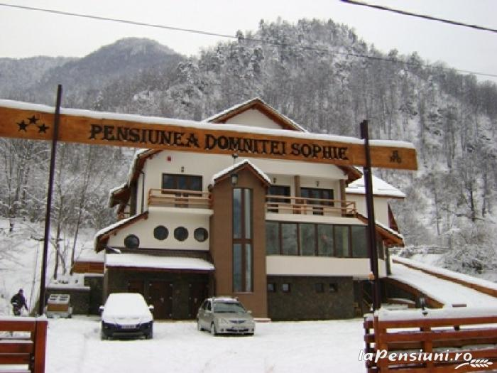 Pensiunea Domnitei Sophie - accommodation in  Olt Valley (19)