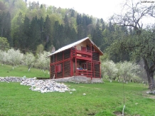 Rural accommodation at  Pensiunea La Sandel
