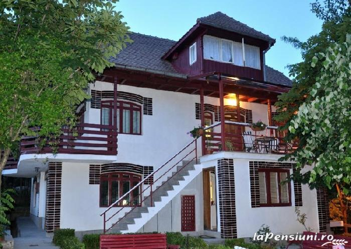 Pensiunea Dalli - accommodation in  Olt Valley (01)