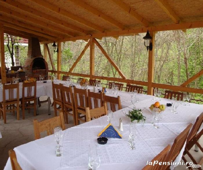 Pensiunea Dalli - accommodation in  Olt Valley (05)