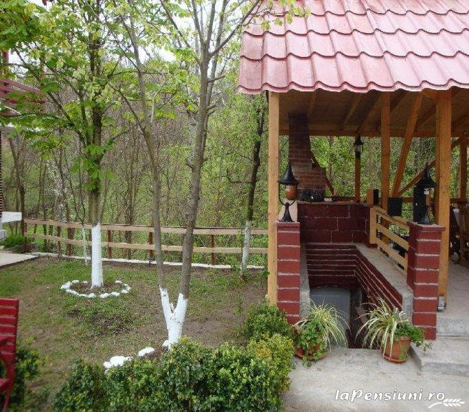 Pensiunea Dalli - accommodation in  Olt Valley (07)