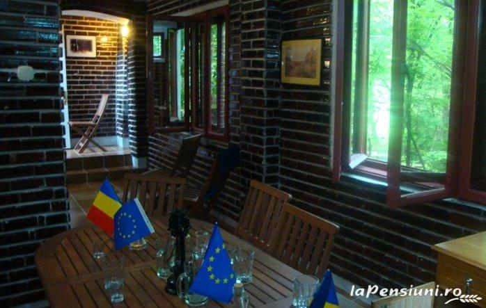 Pensiunea Dalli - accommodation in  Olt Valley (08)