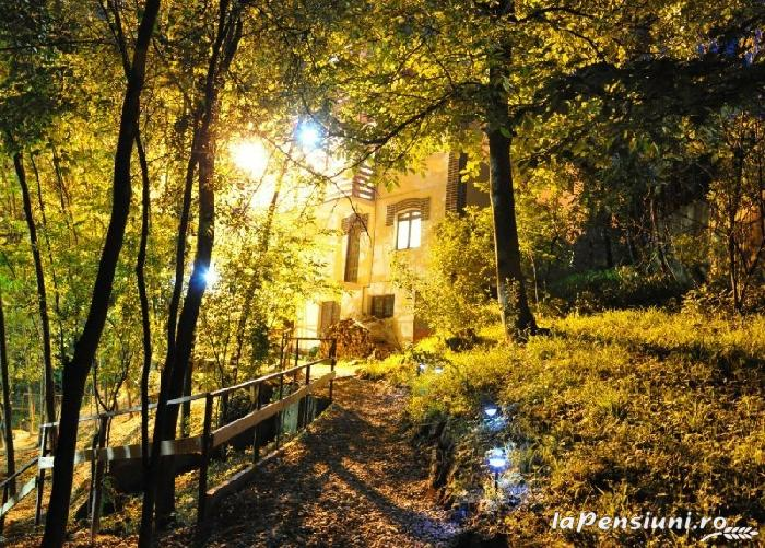 Pensiunea Dalli - accommodation in  Olt Valley (12)