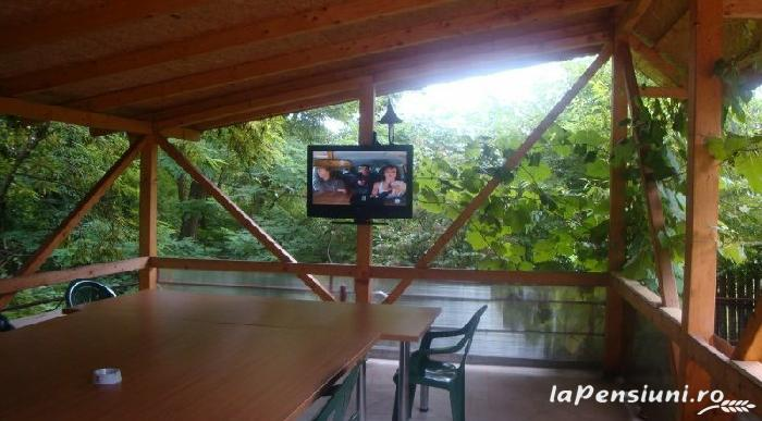 Pensiunea Dalli - accommodation in  Olt Valley (15)