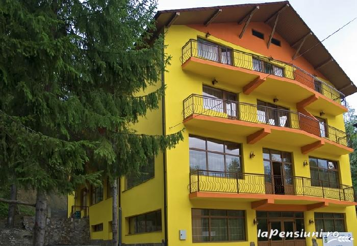 Pensiunea Trei Brazi - accommodation in  Olt Valley (01)
