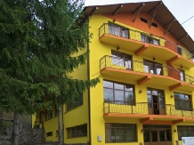 Rural accommodation at  Pensiunea Trei Brazi