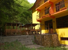 Pensiunea Trei Brazi - accommodation in  Olt Valley (05)