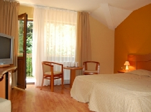 Pensiunea Trei Brazi - accommodation in  Olt Valley (12)