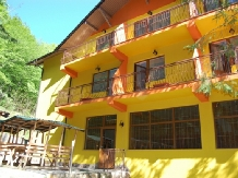 Pensiunea Trei Brazi - accommodation in  Olt Valley (13)