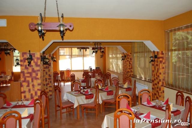 Pensiunea Trei Brazi - accommodation in  Olt Valley (14)