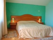 Pensiunea Trei Brazi - accommodation in  Olt Valley (15)