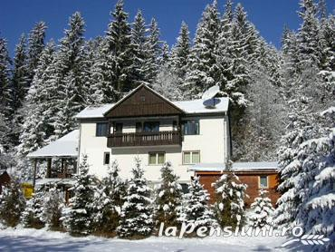 Pensiunea Kiss - accommodation in  Harghita Covasna (10)
