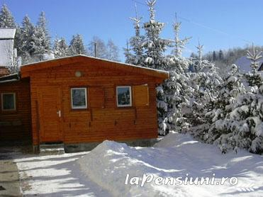 Pensiunea Kiss - accommodation in  Harghita Covasna (12)