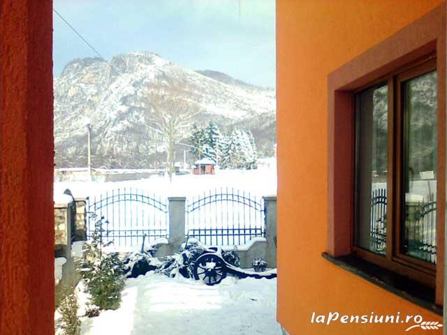 Pensiunea Miraj - accommodation in  North Oltenia (02)
