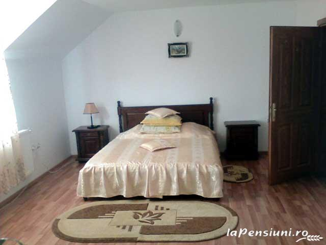 Pensiunea Miraj - accommodation in  North Oltenia (06)