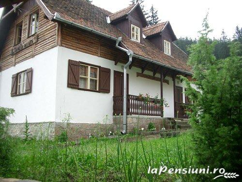 Pensiunea Csomad - accommodation in  Harghita Covasna, Tusnad (06)